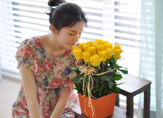[서울배송]All that rose - Nowdays[**화기가변경됩니다]