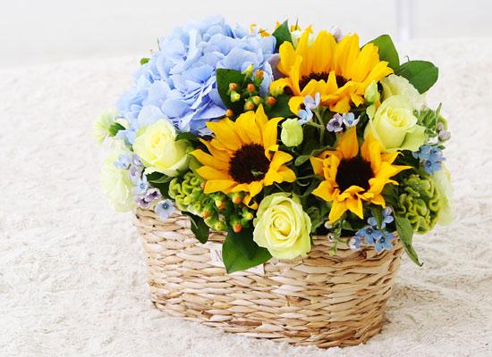 sunflower - di santorini(디 산토리니)-겨울에는 해바라기 대신 다른꽃으로 대체