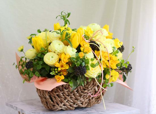 {전국배송}Spring & sweet 봄이와