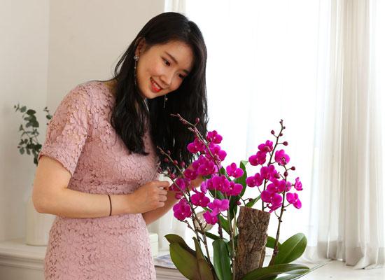 부모님 은혜 감사합니다 - 꽃이 오래가는 만천홍