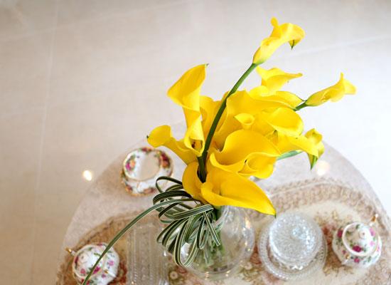 [서울배송] Beautiful Colors - mellow yellow