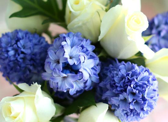 '(必)환경'시대 오아시스없는 플라워화병 - I like the blue Hyacinth
