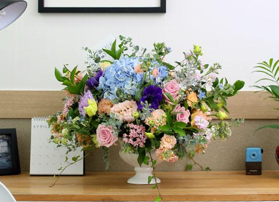 [서울배송]Spring loves 행복예감