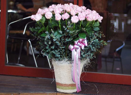 [50][서울배송]로즈 & 시티 - Brilliant Rose