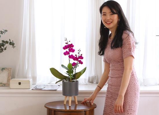 부모님 은혜 감사합니다 - 사랑의 핑크 만천홍