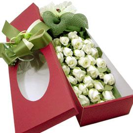 백장미의 순수 꽃배달하시려면 이미지를 클릭해주세요