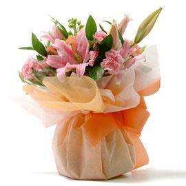 오렌지 꽃배달하시려면 이미지를 클릭해주세요