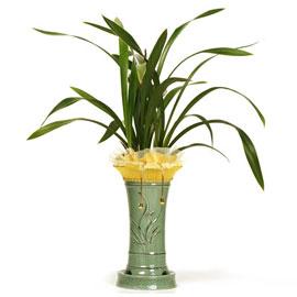 금화산A 꽃배달하시려면 이미지를 클릭해주세요