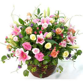 [서울배송]미스터플라워 꽃배달하시려면 이미지를 클릭해주세요