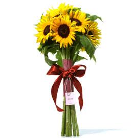 해바라기 꽃배달하시려면 이미지를 클릭해주세요