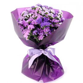 스타티스 꽃배달하시려면 이미지를 클릭해주세요