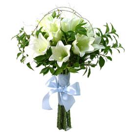 Green lilly 꽃배달하시려면 이미지를 클릭해주세요