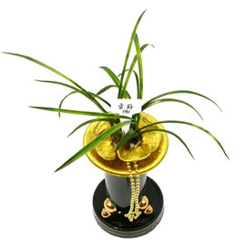 금파(錦波) 꽃배달하시려면 이미지를 클릭해주세요