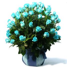 [100]예약배송 Blue Marine(블루마린) 꽃배달하시려면 이미지를 클릭해주세요