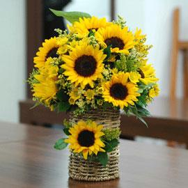 The Summer - 정동진에서 꽃배달하시려면 이미지를 클릭해주세요