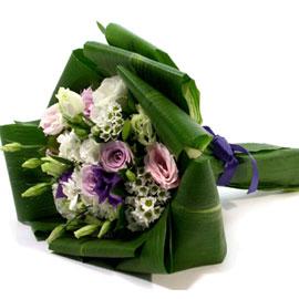 美 - 주순호치(朱脣皓齒) 꽃배달하시려면 이미지를 클릭해주세요