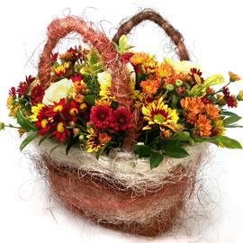 국화향이 진~한 - 곱게물드는 가을들녁 꽃배달하시려면 이미지를 클릭해주세요