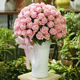 [100][서울배송]Luxury Pink (럭셔리 핑크) 꽃배달하시려면 이미지를 클릭해주세요