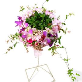 귀여운 신부 꽃배달하시려면 이미지를 클릭해주세요
