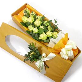 그대 이름은 장미- 키위 꽃배달하시려면 이미지를 클릭해주세요