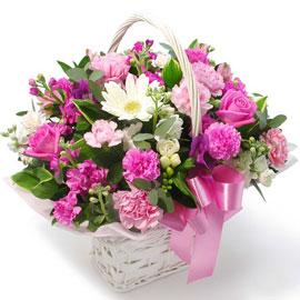 [전국배송] 따스한 마음 꽃배달하시려면 이미지를 클릭해주세요