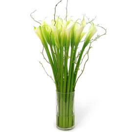 로즈 & 시티 - Viridian(빌리디안)(*계절꽃으로 대체됩니다) 꽃배달하시려면 이미지를 클릭해주세요