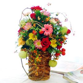 가을이 준 행복 - 가을이 주는 여유 꽃배달하시려면 이미지를 클릭해주세요