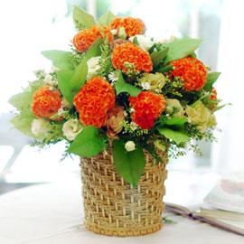 [서울배송]가을이 준 행복 - 花容(화용:꽃같은 여자의 얼굴)/바구니변경 꽃배달하시려면 이미지를 클릭해주세요