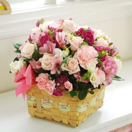 [서울배송] the spring day - 순정만화 꽃배달하시려면 이미지를 클릭해주세요