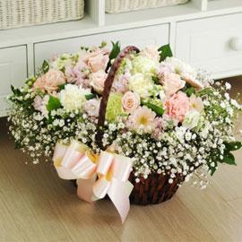 [서울배송]the spring day - 봄의 눈 꽃배달하시려면 이미지를 클릭해주세요