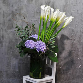 [서울배송] Elegant noble- Milestones(화기 품절시 변경될 수 있음) 꽃배달하시려면 이미지를 클릭해주세요