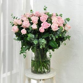 [서울배송] Elegant noble - Julia(화기 품절시 변경될 수 있음) 꽃배달하시려면 이미지를 클릭해주세요