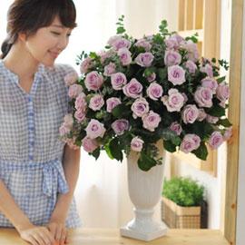 [서울예약배송] [100]The Roses Bloom - Violet Perfume 꽃배달하시려면 이미지를 클릭해주세요