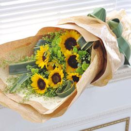 Sunny day - Sunny flower 꽃배달하시려면 이미지를 클릭해주세요