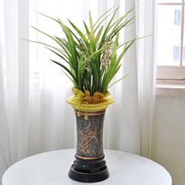 [인사이동 추천] 예쁜 꽃이 피어있는 기품있는 동양란 꽃배달하시려면 이미지를 클릭해주세요