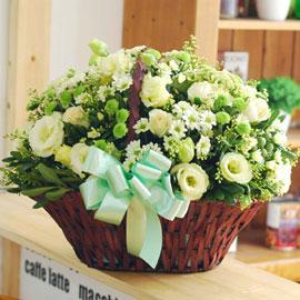 [서울배송] Be my love - Sunshine 꽃배달하시려면 이미지를 클릭해주세요
