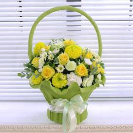 [서울배송] Bling bling-그대네요(바구니 품절시 변경될 수 있음) 꽃배달하시려면 이미지를 클릭해주세요