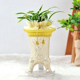 [인사이동추천]난엽이 화려한 동양란 *화기 변동 될수 있습니다* 꽃배달하시려면 이미지를 클릭해주세요