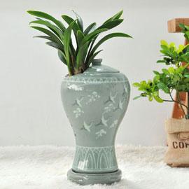 名品동양난 - 달마( 청자분 ) 꽃배달하시려면 이미지를 클릭해주세요