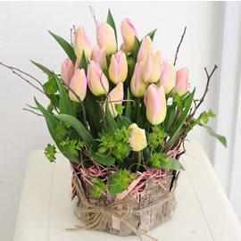 [서울배송]겨울 꽃 연가 - 어느 수채화(화기 품절시 변경) 꽃배달하시려면 이미지를 클릭해주세요