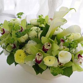 [서울배송]꽃을 노래하다 - 어느 꽃에게 꽃배달하시려면 이미지를 클릭해주세요