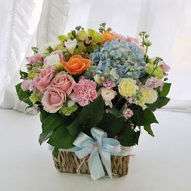 [서울배송] 꽃을 노래하다 - 하늘을 담은 바다 꽃배달하시려면 이미지를 클릭해주세요