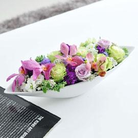 [서울배송] Living flower-  In the Mood  (화기는 변경됨) 꽃배달하시려면 이미지를 클릭해주세요