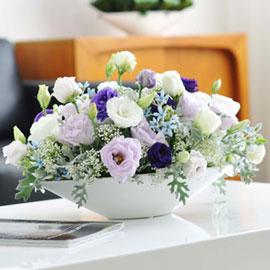 [서울배송] Living flower- Summertime 꽃배달하시려면 이미지를 클릭해주세요