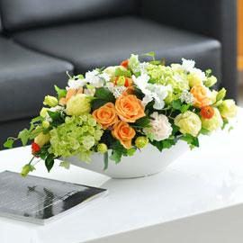 [서울배송] living flower-Hello Dolly 꽃배달하시려면 이미지를 클릭해주세요