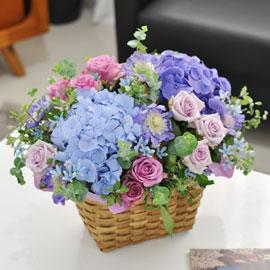 [서울배송] Summer palette- Someday 꽃배달하시려면 이미지를 클릭해주세요