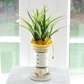 난엽이 아름다운 동양란 - 흰색 화분에 심은 살마금 꽃배달하시려면 이미지를 클릭해주세요