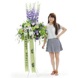 [플라워119 디자인화환]바이올렛 축하화환 꽃배달하시려면 이미지를 클릭해주세요