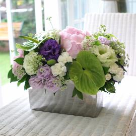 [서울배송]  Dear You 꽃배달하시려면 이미지를 클릭해주세요