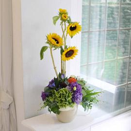 [서울배송]Summer yellow - Be Alright 꽃배달하시려면 이미지를 클릭해주세요